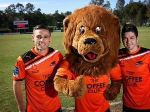 Ferreira set to launch at Brisbane Roar