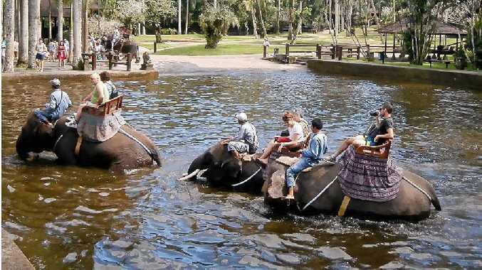 Tourists at the Elephant Safari Park at Taro in Bali.