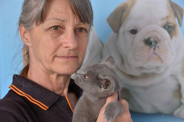 Dale Bradford of Mad About Pets in Nambour. Photo: John McCutcheon / Sunshine Coast Daily