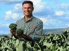 OUTSIDER AMONG VEGIES: Gatton broccoli farmer and Rugby Farms director Matt Hood says sweeter strains are being developed.