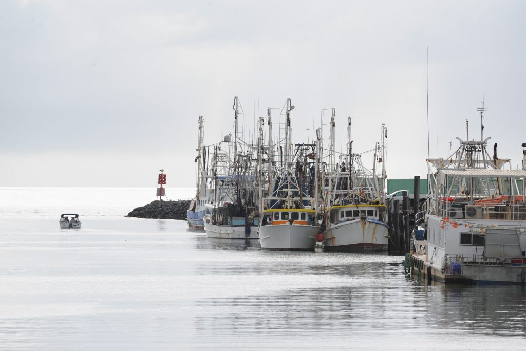 RUMOURS beam trawlers have been granted access to the Baffle Creek following the announcement of a government have been quashed.
