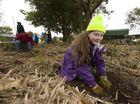 Kids get into National Tree Day spirit