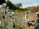 National Tree Day - Many caring people took part in tree planting day at Pialba.
