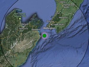 'Severe' quake rocks Wellington again