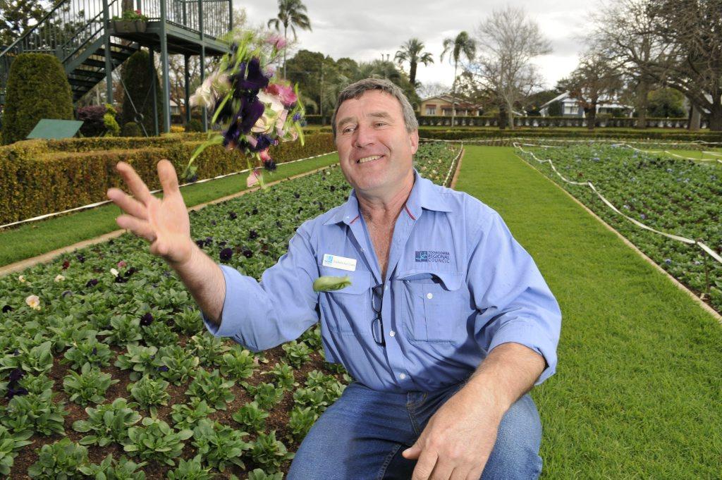 Council gardener Frieldhelm Karl Grams throws some pansies in the air at Laurel Bank park.
