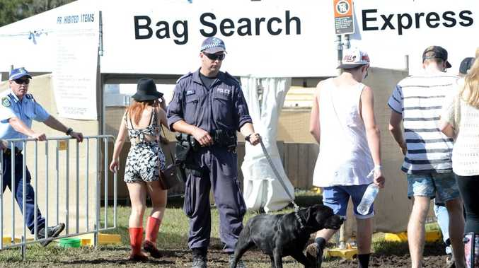 Police sniffer dogs at the enterance of Splendour In The Grass.