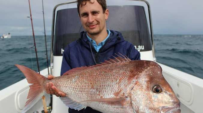 Peter Majzner with a quality Hervey Bay snapper caught on a charter with Hervey Bay Fly and Sportfishing.