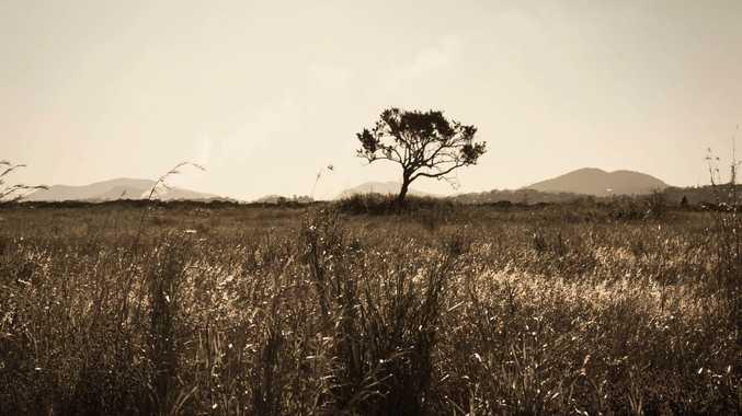 Bluewater Trail - Danielle Handley.