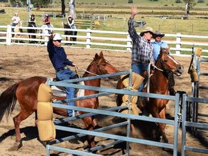 Grafton to host first ever team penning state titles