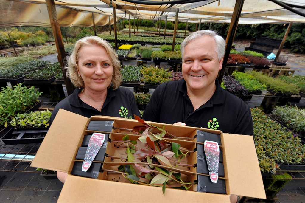 Business manager Polly Ingles and commercial manager Steven Hadlow from Australian Plants Online in Woombye show off their specially designed box with tubestock plants inside, ready to be posted throughout Australia.