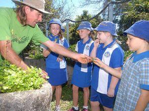 Vegetables grow on kids
