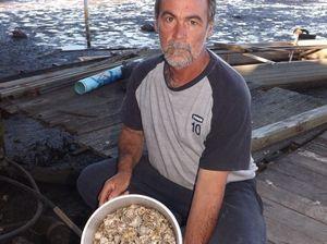 Acid creek eats oysters and profits
