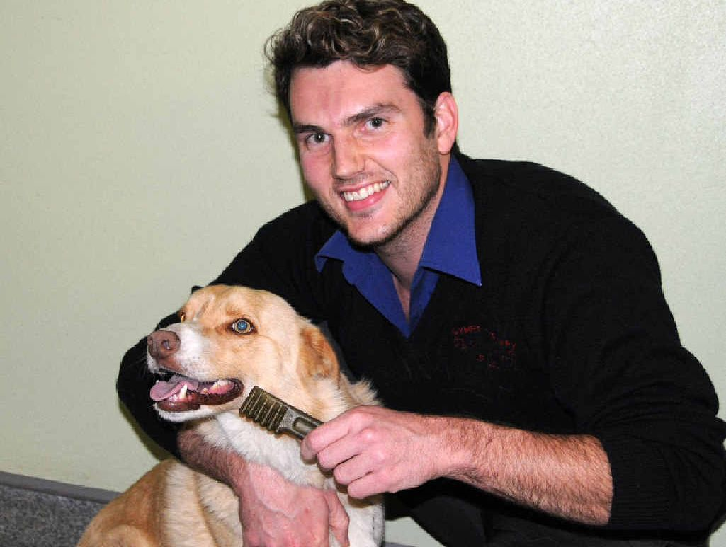 Vet nurse Daniel Chapman gives Diesel a dental chew to get his teeth and gums healthy.