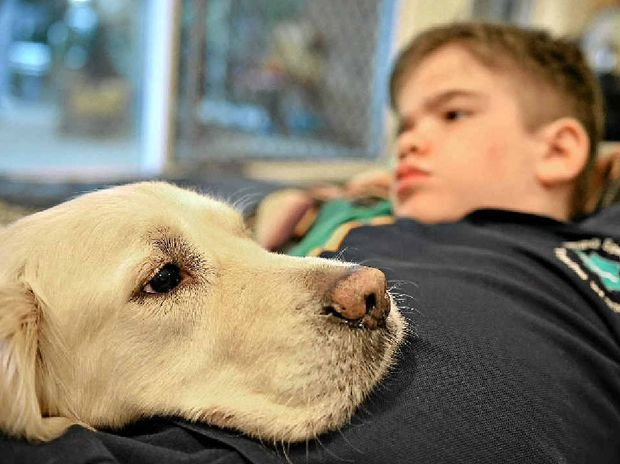 Dylan Jessop, 10, with his assistance dog Yebo. Dylan has a degenerative metabolic disorder.