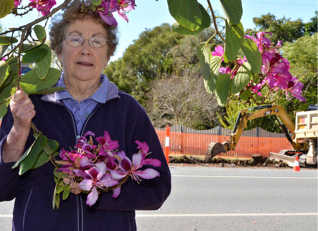 Dawn Choate shows the type of trees chopped down and removed accidentally by Gympie council workers this week.