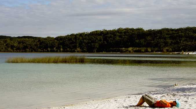 Speakers at the the Biennial Fraser Island Conference indicated climate change would affect mangroves in the Great Sandy Strait and Fraser Island, and the region's flora and fauna.