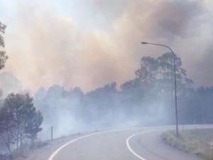 Fire threatens to cross Sunshine Motorway