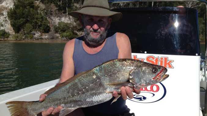 Hervey Bay local Mark Simpson with a nice Jew taken near Kingfisher recently.