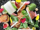 SUMMER DELIGHTS: A delicious serve of Hervey Bay kimchi scallops prepared at Coast restaurant using the famed scallops of the city.