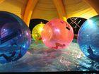 Whale aid concert - having fun in the Aqua Balls.