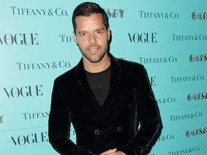 Ricky Martin confesses to bullying gay men