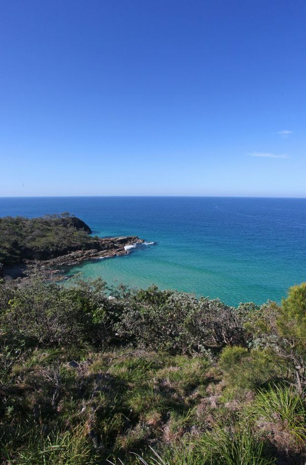 Image for sale: Noosa National Park. Photo Darryn Smith / Sunshine Coast Daily