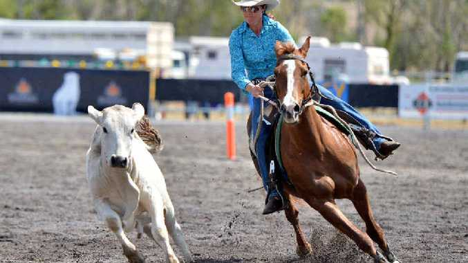 DAY ONE: Kay Radke rides Jazz in the Ladies Draft on day one of the ACA National Finals.