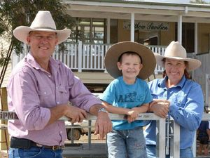 Mangled arena now 'as new' for campdraft