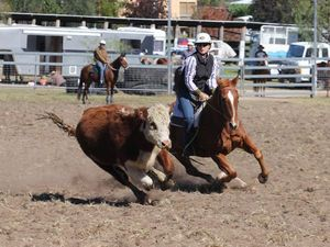Sponsors jump on rodeo's wagon