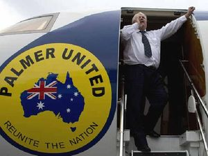 Clive Palmer's jet goes up for auction