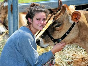 Crowd enjoys Noosa Country Show and tell