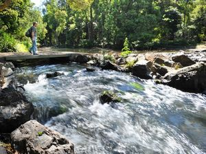 Three month fishing ban in Nymboida and Mann rivers