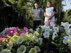 SANCTUARY: Nicholas Johnson (left) and Kerry Layton of East Lismore in their East Lismore garden that will be open for viewing this weekend.