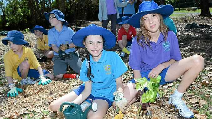 KID POWER: St Carthage's students Mia Torres, 10, and Gemma Poles, 10 and classmates took part in the Wilsons River Catchment Education and Rehabilitation Project.