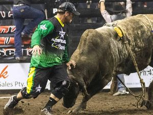 Simpson will take heat off riders as bulls buck