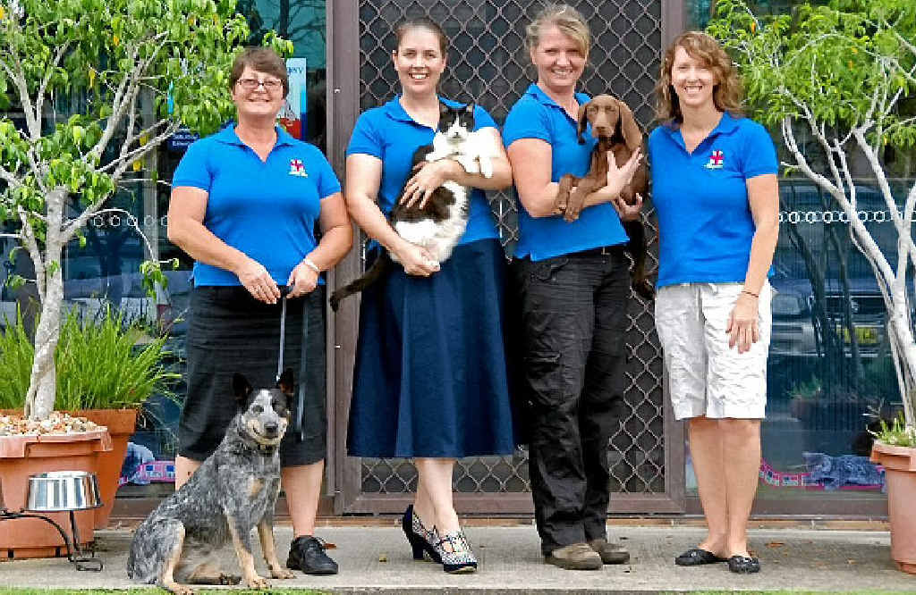 TEAM: Nurse Julie with Milly, Dr Karen with Moobycat, nurse Anthea with Koda, and nurse Leisa.