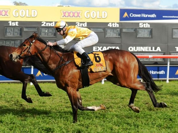 The Andrew Parramore trained Single Chance was named as the Clarence River Jockey Club's best two-year old in 2013.