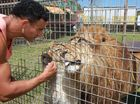 Lennon Brothers Circus has set up camp in Caloundra and lion trainer, Mohammed Jritlou, gave the Daily an inside tour to meet some of the animals he cares for. Mohammed with his lions, Kovu and Kiara.