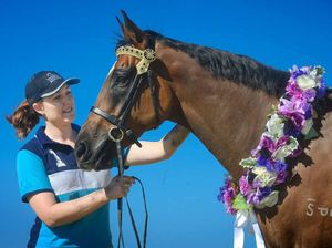 Hobby now a global hit in horse world
