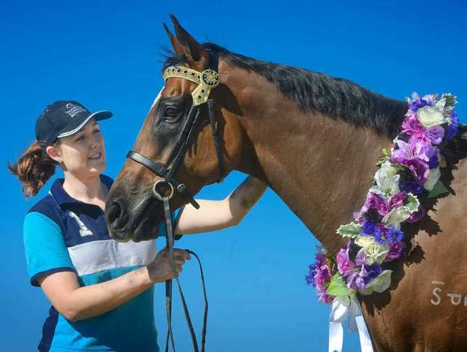 GIDDYUP: Amie Want and High Time with some of Amie's work from Champions Choice Browbands. Photo: Adam Hourigan