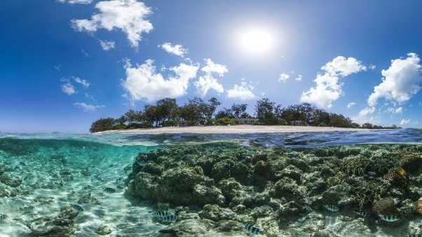 A snap of Lady Elliot Island taken as part of the worldwide Catlin Seaview Survey.