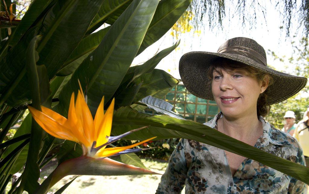 Karen Caffrey of Redlands City visits the exhibition garden of Marjorie Martin in Dallang St.