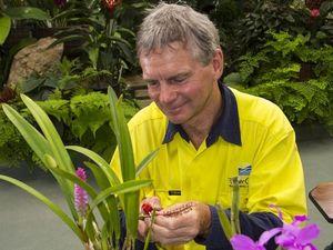 Get along to botanic gardens for orchid potting workshop