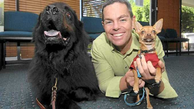 MAN'S BEST FRIEND: V8 Supercar champion Craig Lowndes, with Apollo and Ping Ping, lent his support to the RSPCA shelter cause recently.