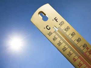 Long term forecast suggests warm, dry summer ahead
