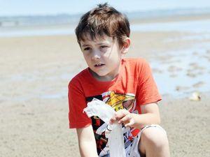 Big turtle chokes to death on plastic at Dundowran beach