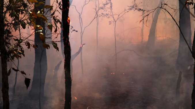 Tweed suburban homes are also at risk from bushfires.