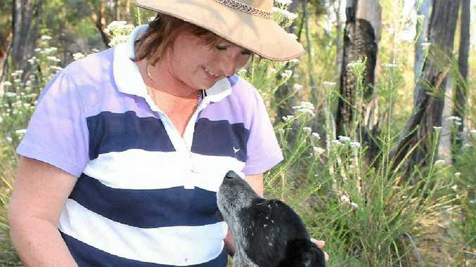 BEST OF FRIENDS: Paula Boatfield and her faithful blue cattle dog Levi are inseparable when wandering around the family's Amiens property.