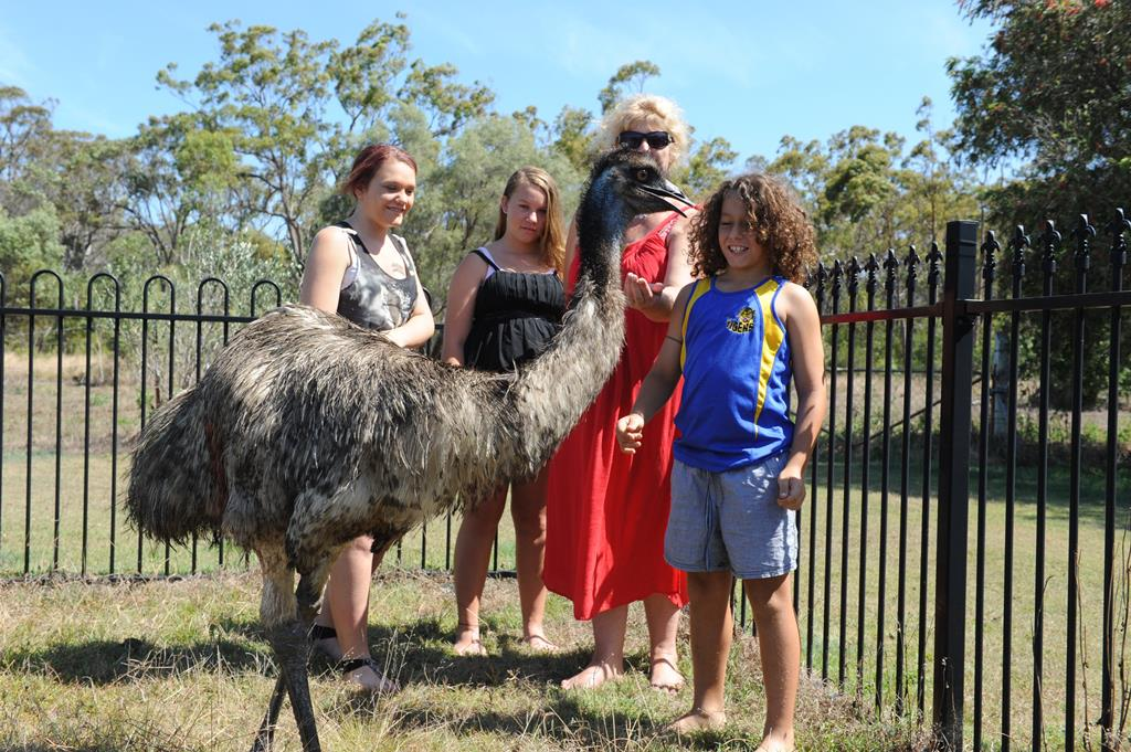 Megan, Tamika and Donna Corr with Ume the emu which has been knocking on doors in Coonarr looking for food. The injured emu is being treated by Donna until it can be relocated to a wildlife park.