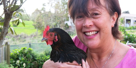 Kay Eagle with Ginger, the crowing hen which is developing spurs and behaving like a rooster.